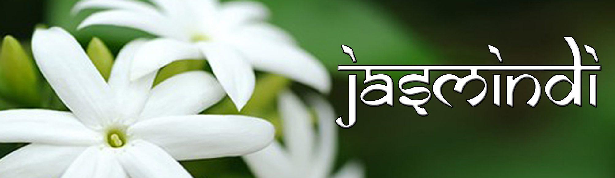Jasmindi